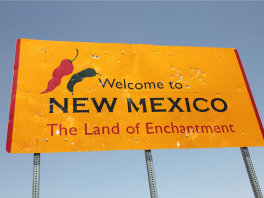 2020 New Mexico General Election Preview